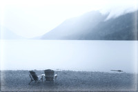 20130827 [C] PNW Vacation - ONP-Lake Crescent 001-Edit v1