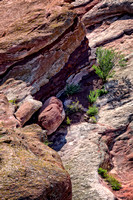 """Red Rocks Park"", ""Red Rocks"", Colorado, red, rocks, landscapes, sandstone"